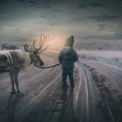 Når juletiden kradser
